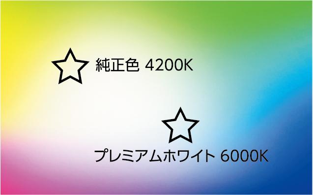 HID純正交換バーナーEX 6000K